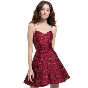 Alice + Olivia Anette brocade party dress